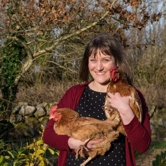 Keeping hens at home